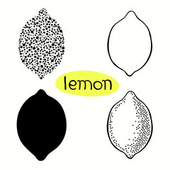 Hand drawn illustration of lemons isolated on white background.