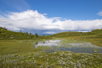 Lakes in the mounntain