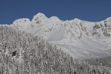 panorama of the Alpes at the Passo San Pellegrino in Italy