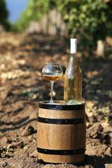 Wooden barrel and bottle of wine on grape plantation background