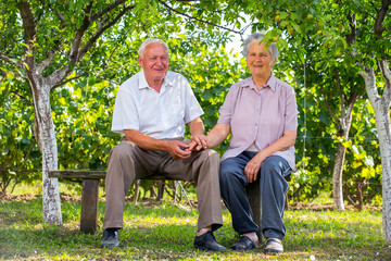 Nice senior couple together in a summer park