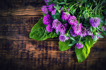 Bouquet of blooming clover on the wooden background.