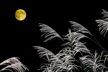 中秋の名月とススキの合成