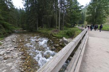 Dolina Kościeliska, Tatry