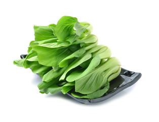 Bok choy (chinese cabbage)