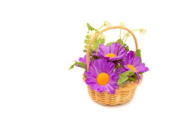 Basketry with Artificial chrysanthemum flower on white backgroun