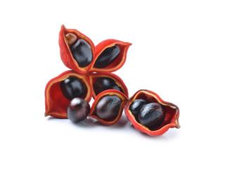 sweet chestnuts (Sterculia monosperma)