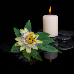 spa concept of passiflora flower, green leaf with drop and candl