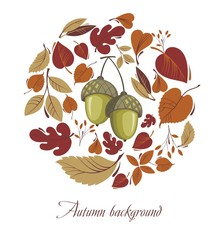 Autumn leaves with acorn