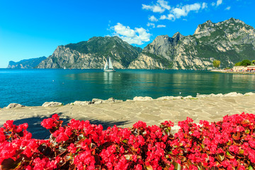 Red flowers,mountains and Lake Garda,Northern Italy,Europe
