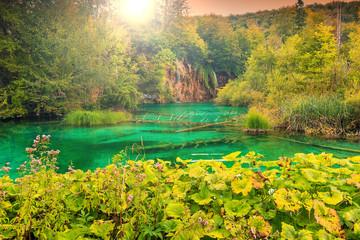 Plitvice Lakes National Park in Croatia,Europe