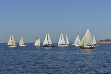summer regatta of sailing boats