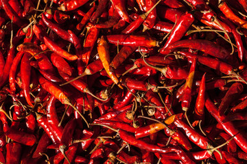 Red spicy chili peppers