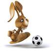 canvas print picture - Fun rabbit