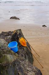 Stillleben Meeresfrüchte sammeln