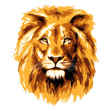 Big fiery lion