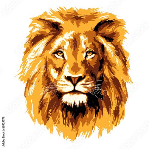 Big fiery lion - 69929571