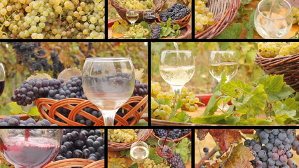 Pouring wine in the vineyard, collage
