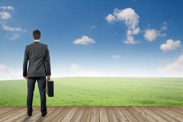 Landschaft mit  Businessmann