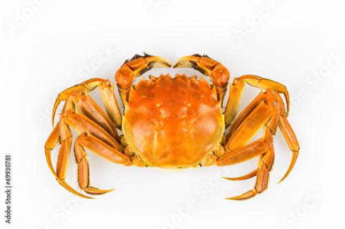 delicious crab - 69930781