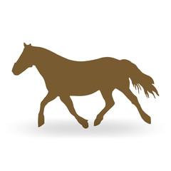 pony I