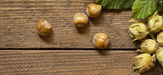 Hazelnuts on wood