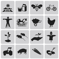 Agriculture and Farming black icons set3. Vector Illustration ep
