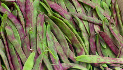 Ecological Green Beans