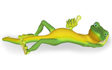 Gecko o'key