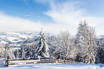 Winter in mountains Carpathians, Ukraine