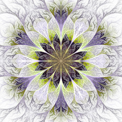 Beautiful fractal flower in gray and purple. Computer generated