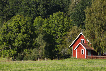 small red cottage set in a beautiful nature landscape