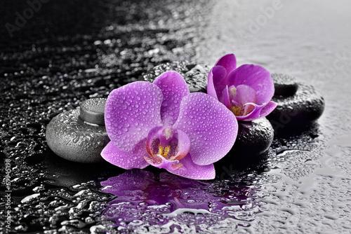 Poster Orchidee Storczyki z kamieniami bazaltowymi