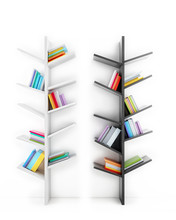 Drzewa wiedzy, półki z książkami wielokolorowe
