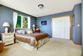 Bedroom interior with navy walls and closet