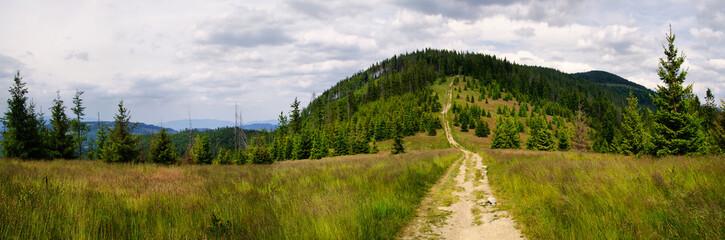 Pejzaż górski ze szlaku na Rysiankę
