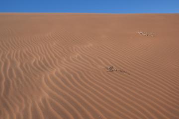 Giochi di luce sulle dune di sabbia