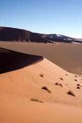 Duna in Namibia