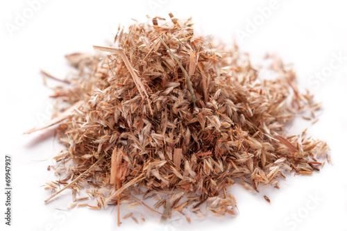 Papiers peints Herbe, epice Palmarosa grass seeds (Cymbopogon martinii)