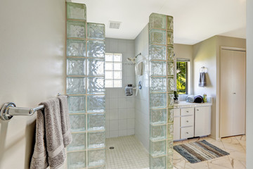 Shower with glass block trim