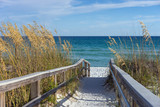 Fototapety Beach Boardwalk with Dunes and Sea Oats
