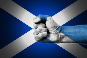 Flag Of Scotland Painted On A Man's Fist
