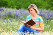 Blonde girl reading the flowery meadow.