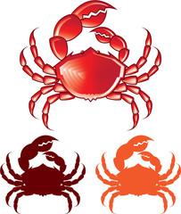Jumbo Crab vector