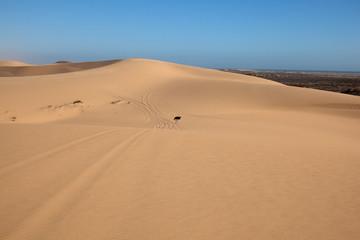 Dune di sabbia nel deserto della Namibia
