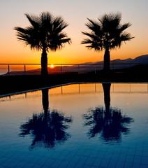 Palm Tree Silhouettes in an Aegean sunrise