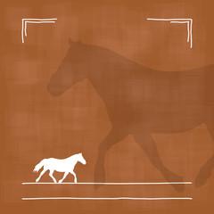 pony VII