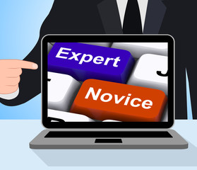 Expert Novice Keys Displays Beginners And Experts