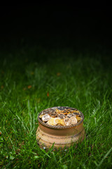 pot with golden coins, green grass background