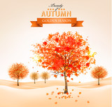Fototapety Autumn background with colorful leaves and trees. Vector illustr